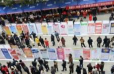 沪规模最大网络招聘会今上线,设四大品牌、八大专区