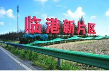 上海临港新片区:构建以7+5+4为重点的现代化产业体系