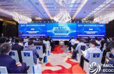 """第四届""""金水湖""""论坛召开 金山全力打造AMOLED产业生态链"""